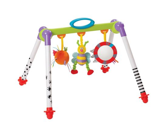 Immagine di Palestrina Take to Play Baby Gym - Taf Toys