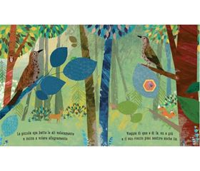 Libro Illustrato Ape - Sassi Junior_1